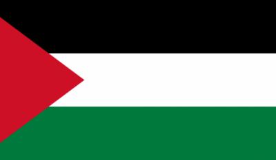 Ziua internațională de solidaritate cu poporul palestinian