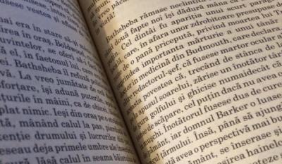 Ziua Mondială a Cărții și a Dreptului de Autor, Ziua Bibliotecarului