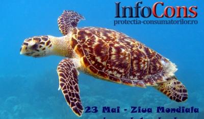 Ziua mondială a broaștelor țestoase