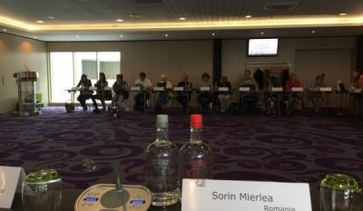 Participare la cea de-a XVII-a Adunare Generala ANEC, Bruselles, ziua a doua
