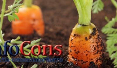 Stiaţi că... Produsele alimentare ecologice