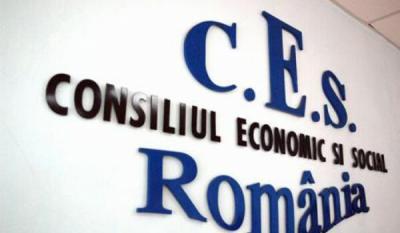 Participarea InfoCons la sedinta Plenului Consiliului Economic si Social
