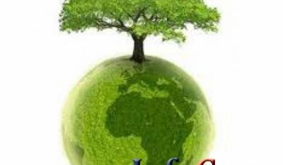 Combaterea declarațiilor înșelătoare privind caracterul ecologic