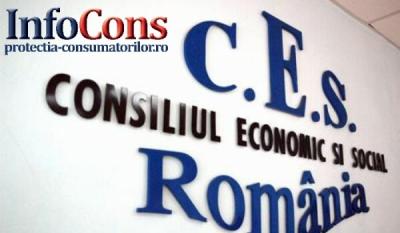 Reprezentanții InfoCons participă la şedinţa Plenului Consiliului Economic și Social