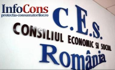 Reprezentanții InfoCons participă la ședința Plenului Consiliului Economic și Social