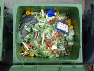 Acțiuni întreprinse pentru reducerea generării deșeurilor menajere