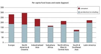 Consumatorii europeni si cei din America de Nord risipesc anual intre 95-115 kg alimente !
