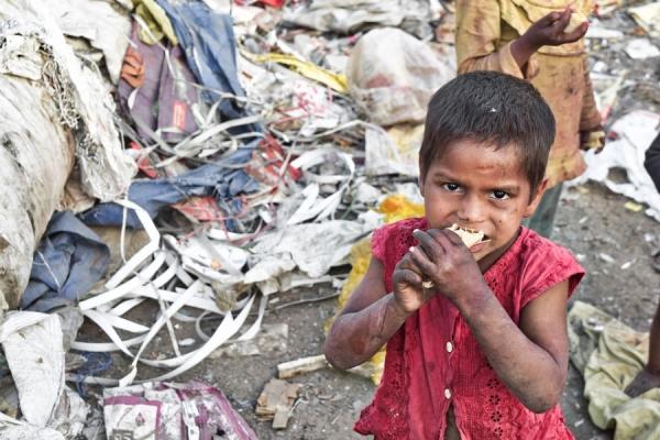 Știați că.. alimentele risipite pot hrăni milioane de oameni?