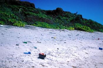 Deșeurile alimentare contribuie la schimbările climatice