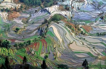 Ce știu consumatorii despre dezvoltarea durabilă?