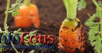 Știaţi că... Produsele alimentare ecologice