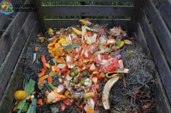Resturile alimentare pot fi folosite și ca îngrășământ pentru plante!