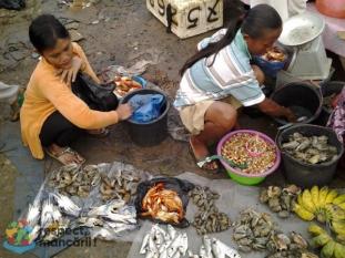 Utilizarea sustenabilă a alimentelor! Respect, mâncării !