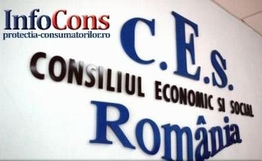 Reprezentantul InfoCons participă la ședința Plenului Consiliului Economic și Social