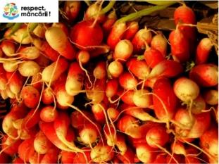 3,7 trilioane de mere echivalentul fructelor și legumelor risipite !