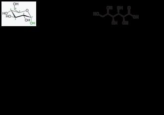 Acidul ascorbic (E300) - InfoCons vă oferă toate informațiile necesare despre acest aditiv