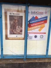 "Colegiul Tehnic ""Transilvania"" Baia Mare, judetul Maramureș - InfoCons - ProtectiaConsumatorului - ProtectiaConsumatoril"