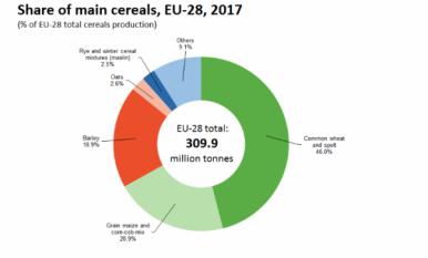 Recoltarea cerealelor în UE a crescut de la 2,7% la 310 milioane de tone