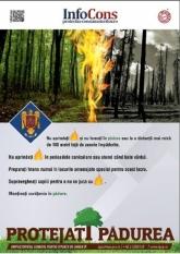 43% din suprafața Uniunii Europene este acoperită de păduri