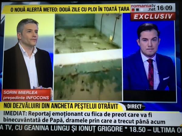 Domnul Sorin Mierlea, președintele InfoCons, a fost în direct la Romania TV