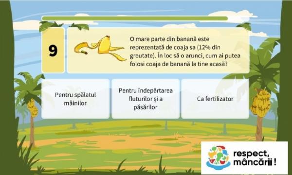 Călătoria bananelor : din pământ până la tine acasă !!