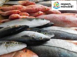 35% din producția de pește și fructe de mare sunt risipite la nivel global  !