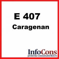 Definiție pentru E407 - Caragenan