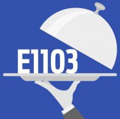 Definiție pentru E1103