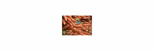 Depozitarea corectă a morcovilor !
