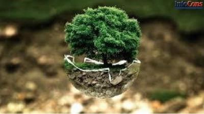Reduceți impactul asupra mediului LA CUMPĂRĂTURI și LA MASĂ