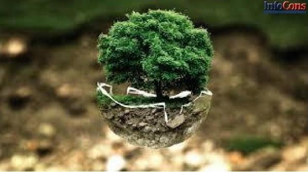 Reduceți consumul și emisiile LA SERVICIU