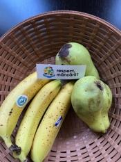 Bananele si biodiversitatea